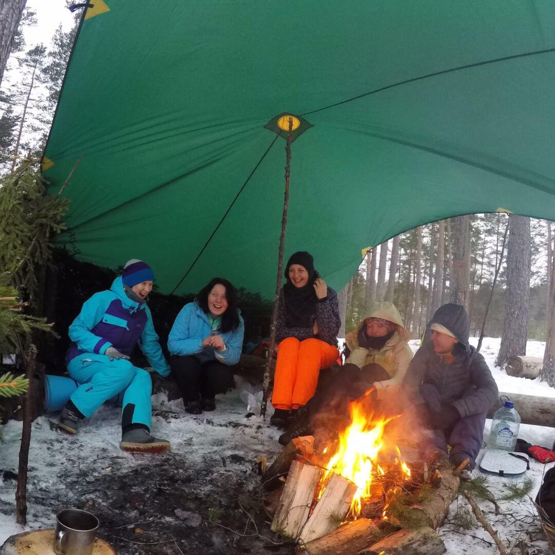зимнее пвд по лен области