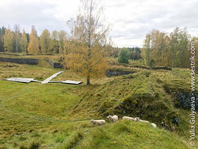 линия Суворова в Финляндии