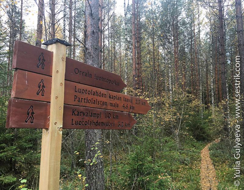 Onkilampi-tropa-Finland