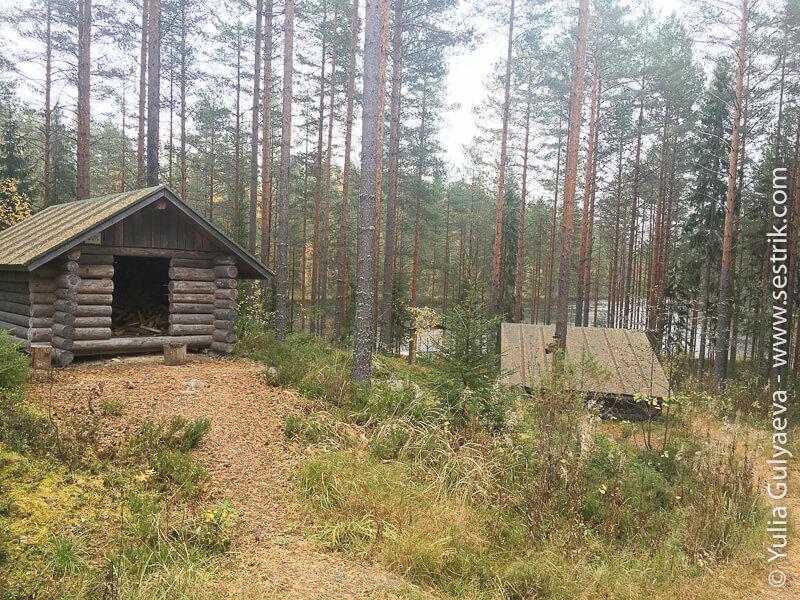 укрытие и сарай с дровами
