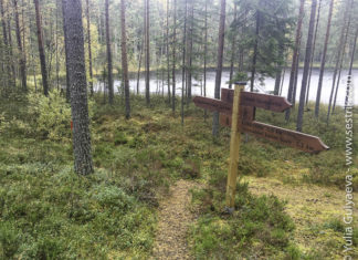 тропа для прогулок у озера Онкилампи