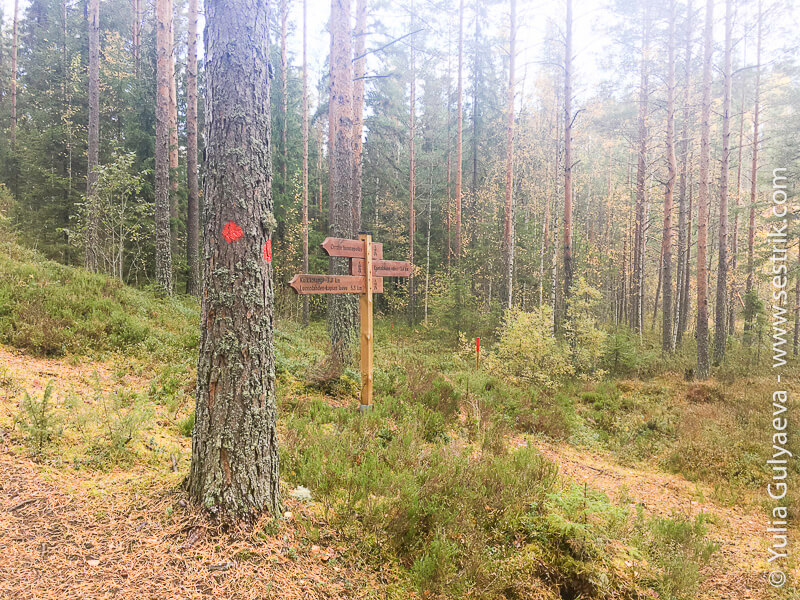 Onkilampi-tropa-Finland маркировка и указатель