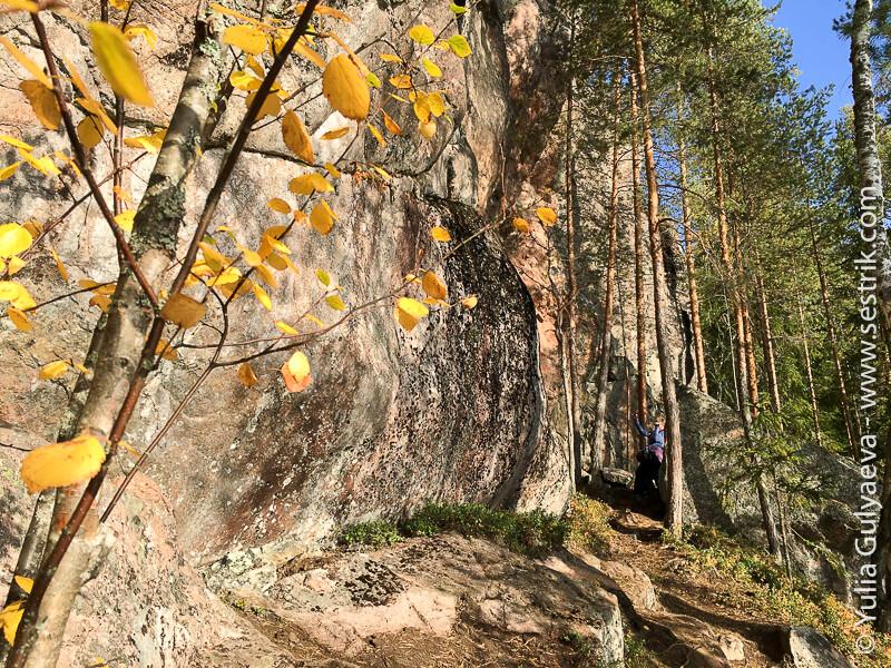 скалы на лисьей тропе в реповеси
