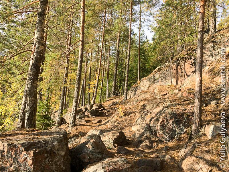Repovesi карельская природа в финляндии