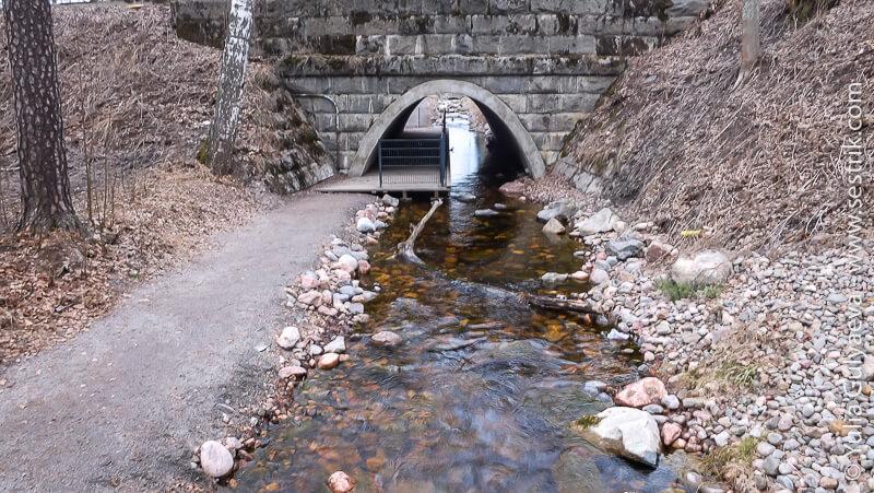 peshehodnaya-tropa-vokrug-imatry мосты