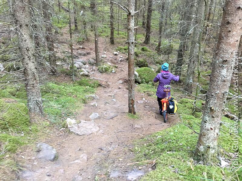 repovesi-marshrut-gagara на велосипеде