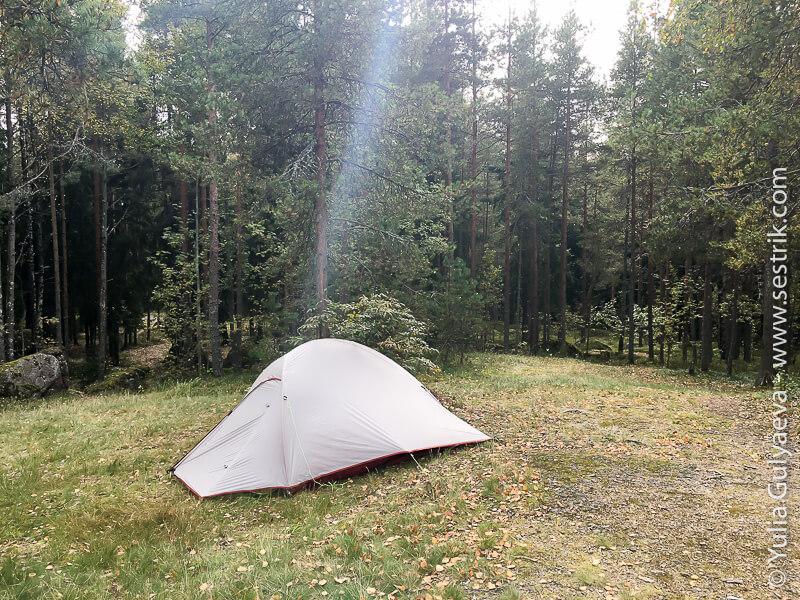 с палаткой в Монрепо