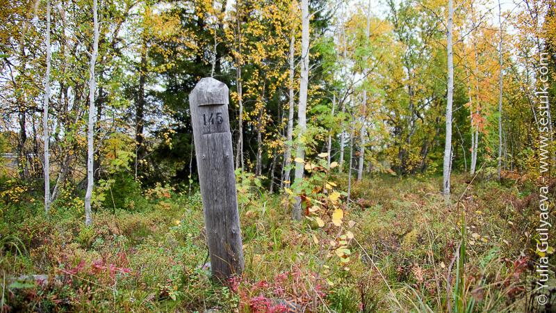 старый верстовой столб на Соловках