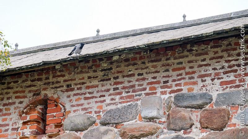 новая и старая кладка стен на Соловках