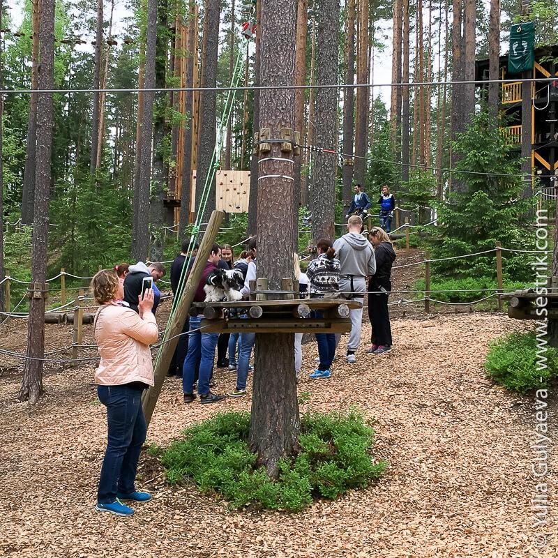 verevochny-park-norvezhskiy-oreh инструктаж
