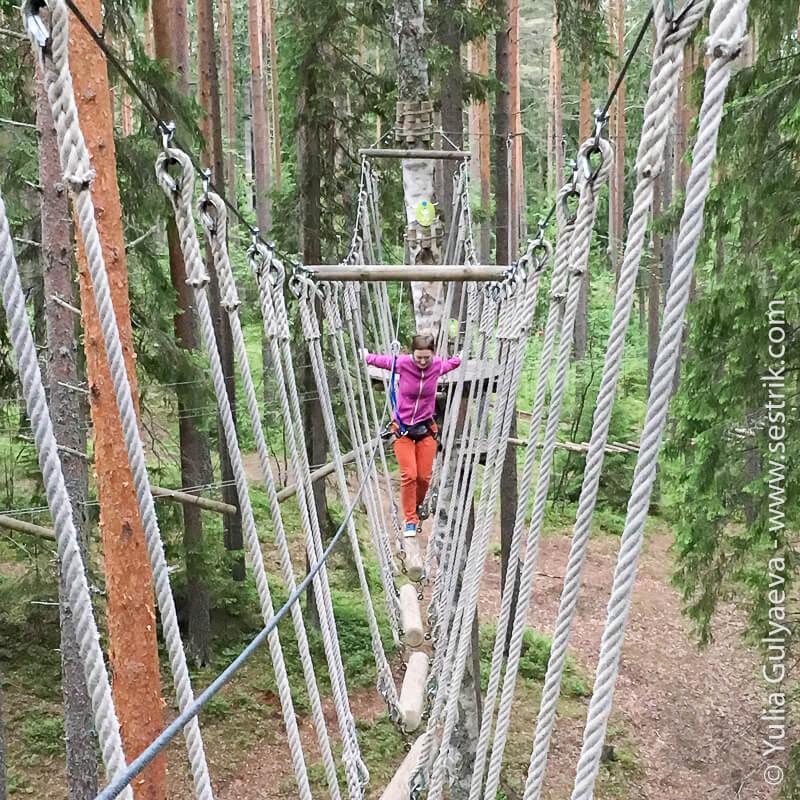 препятствия в парке норвежский орех
