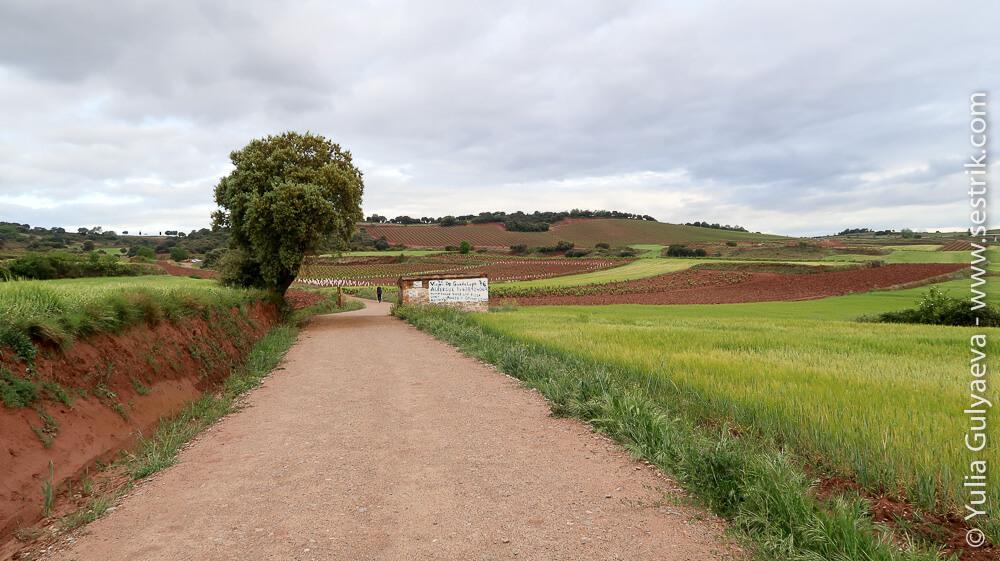 глиняные дороги региона риоха
