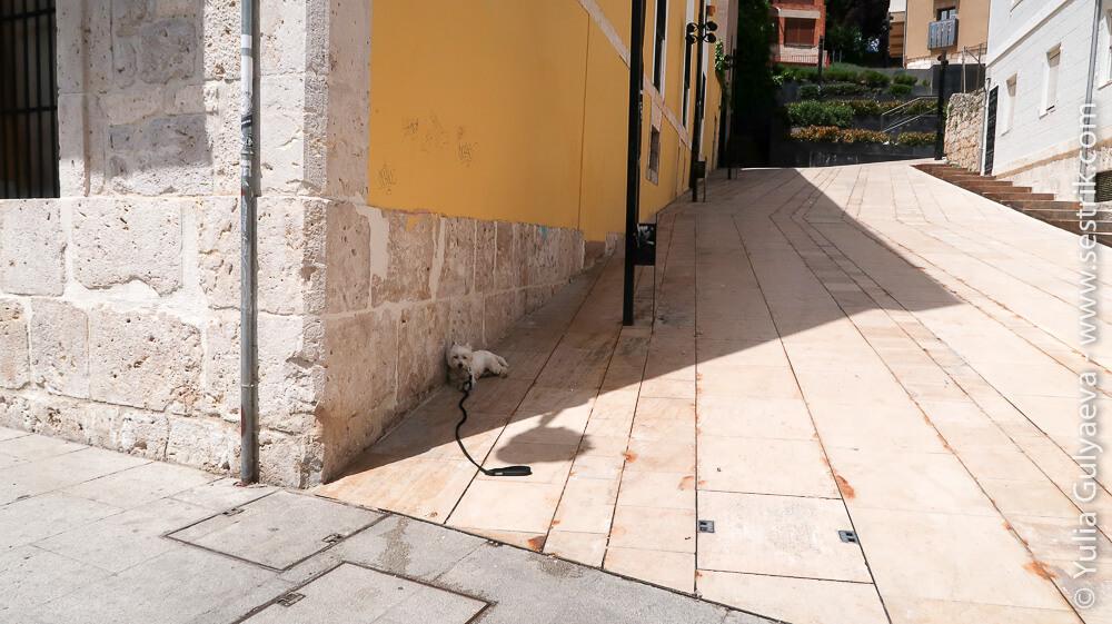 полуденная жара в Испании