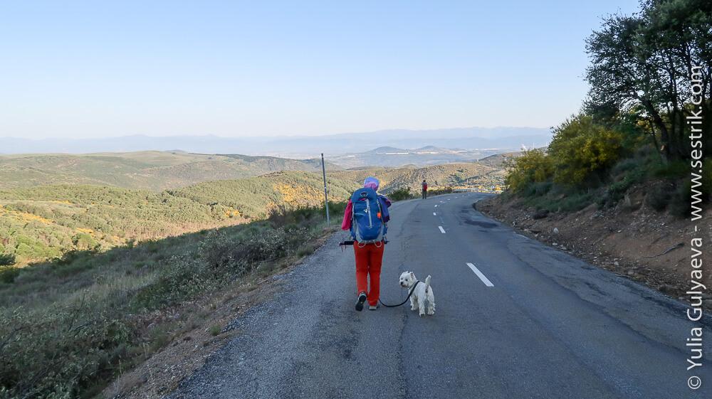 дорога от Пьерос среди лавандовых полей