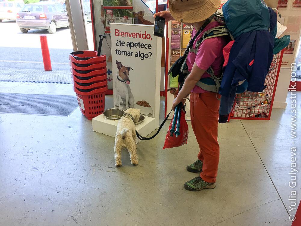 магазин товаров для животных в Понферраде