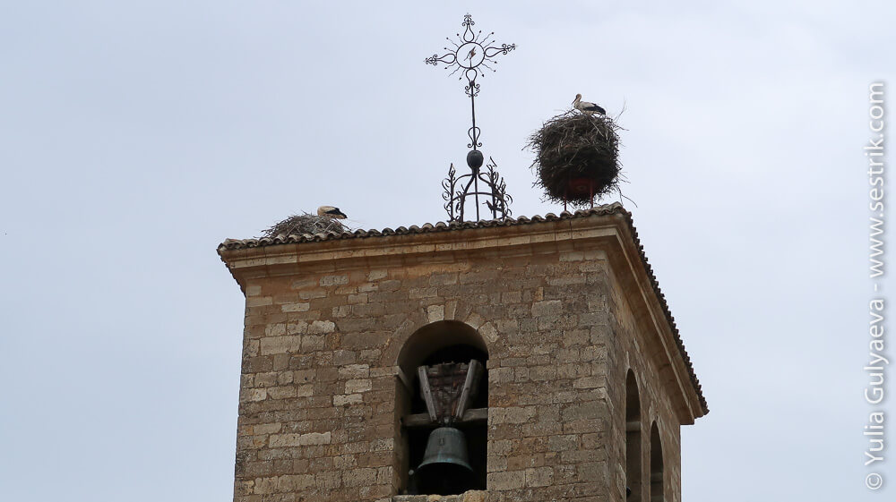 аисты на колокольне