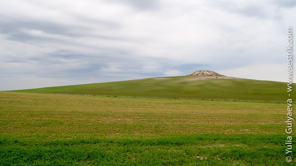 поля провинции Паленсия