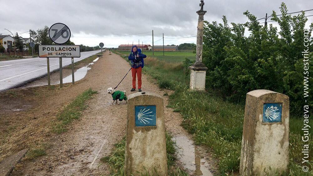 Camino-Frances-day-8