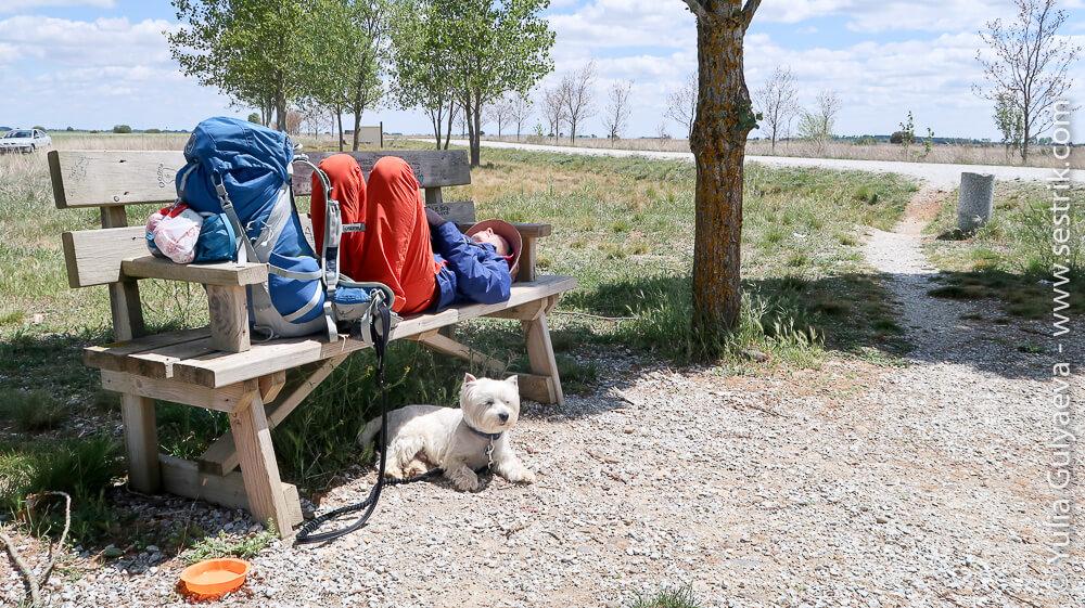 отдых в жаркий испанский день на скамейке