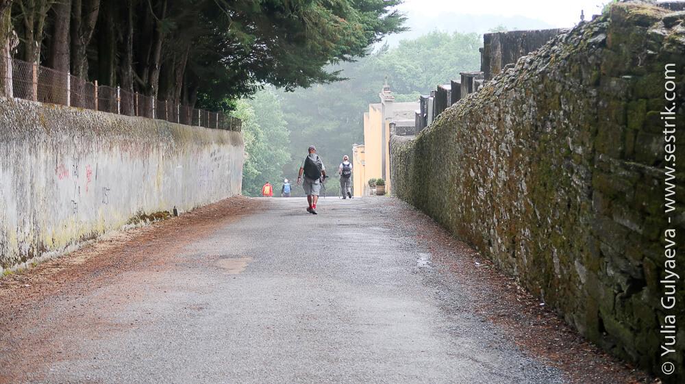 выход пути из города Сария