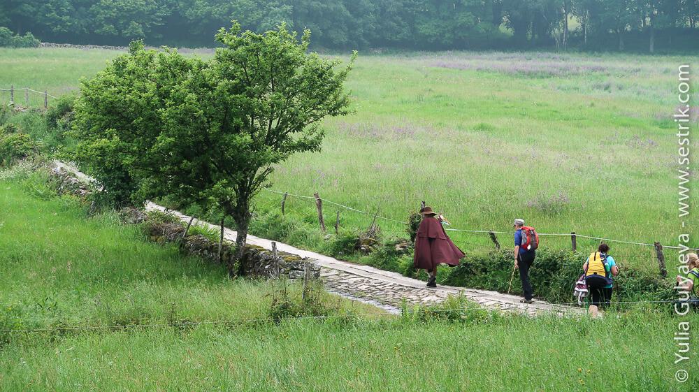 актер пилигрим в полях на Камино