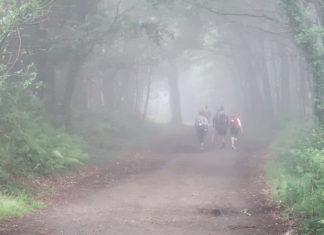 Утро туманное на пути Сантьяго