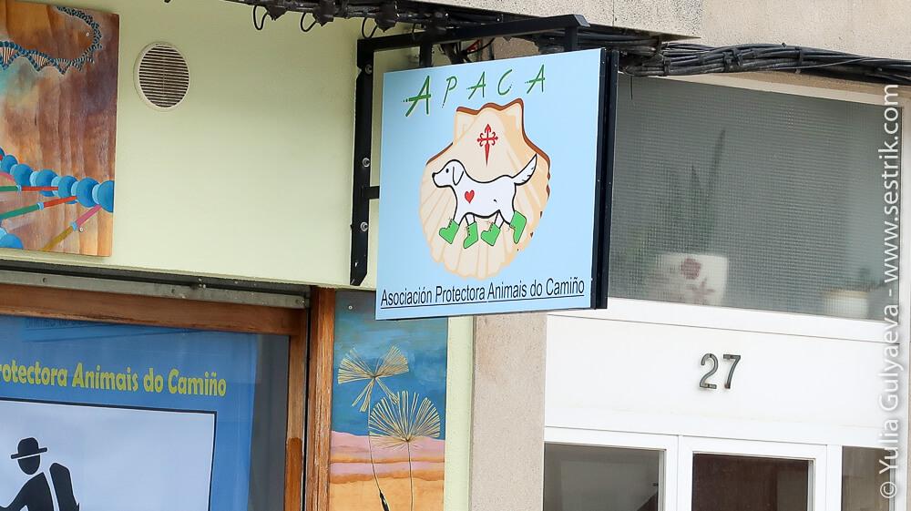 ассоциация помощи животным на камино