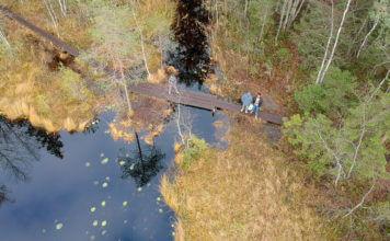 фото с дрона парка Нууксио