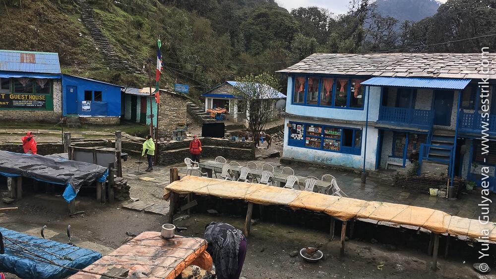 Тадапани вид деревни