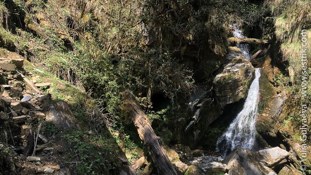 Тропа из Тадапани в Горепани