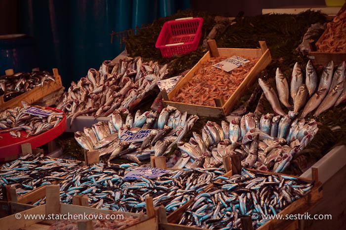 рыбный рынок стамбул