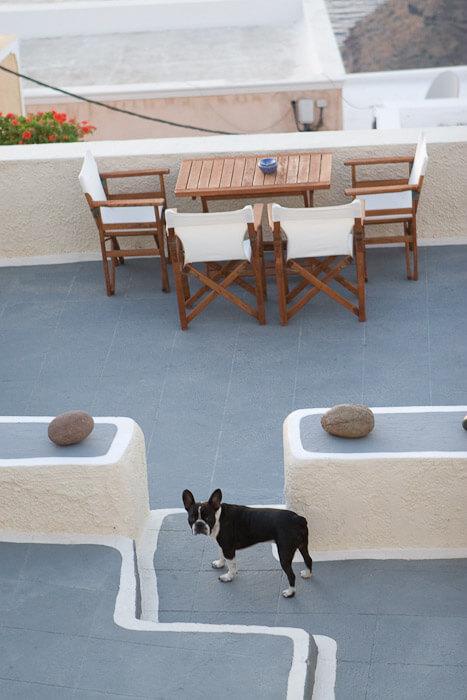 Санторини фото Фира