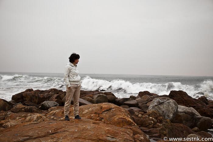 фото море океан