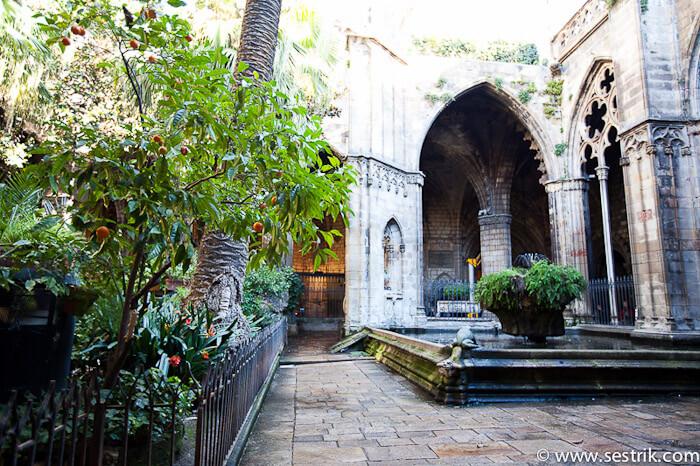 Что посмотреть в Барселоне Готический квартал