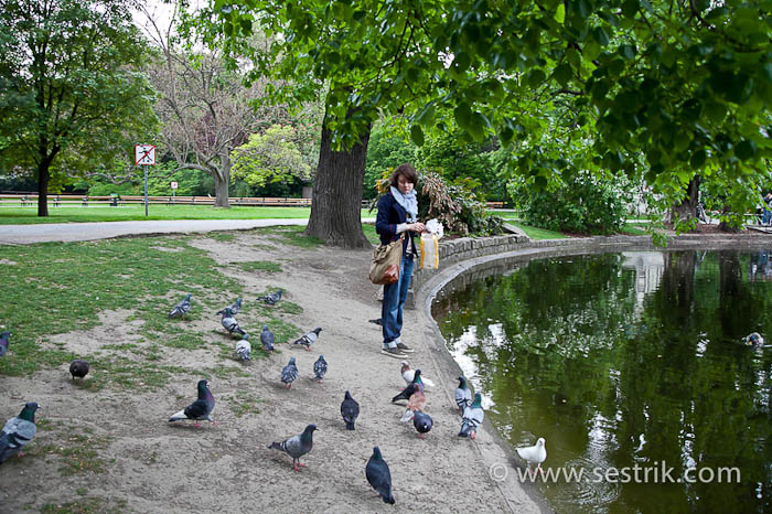 Парки Вены озеро