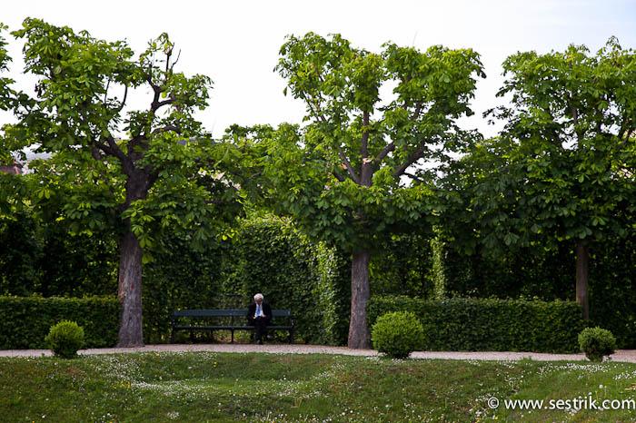 Бельведер парк
