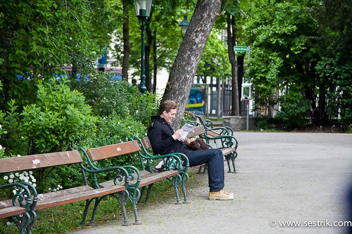 городской парк Вены скамейки