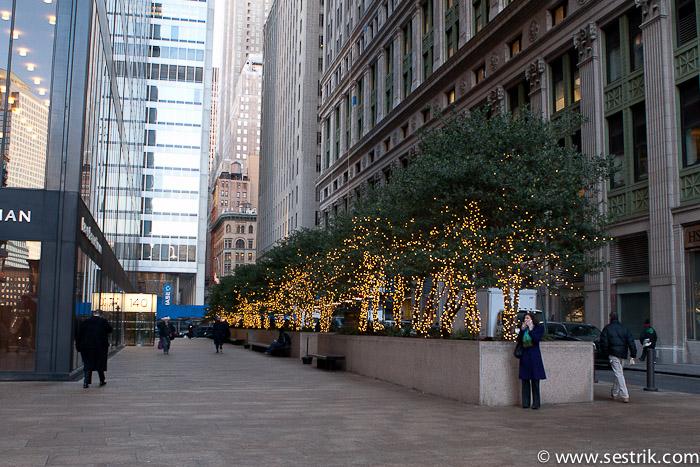 Фотографии Нью-Йорка Улицы Нью-Йорка