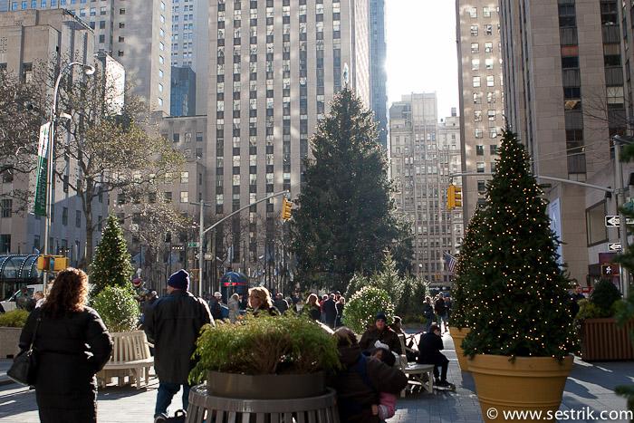 Фотографии Нью-Йорка Рождество в Нью-Йорке